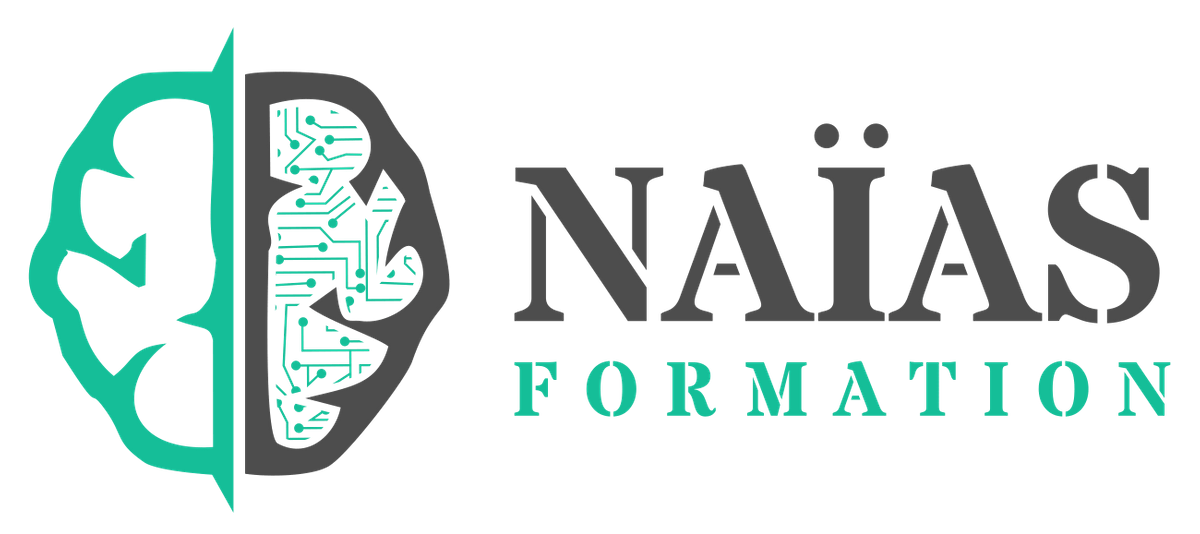 Naîas Formation-Growth Consult-Client-Collaborateur-Growth hacking-Mehdi Naceri