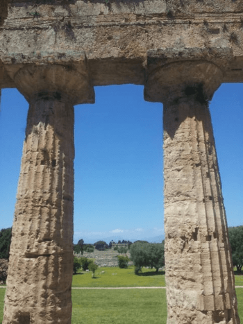 View from inside the temple of Neptune