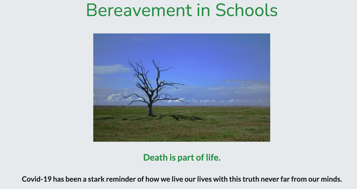 Bereavement in Schools