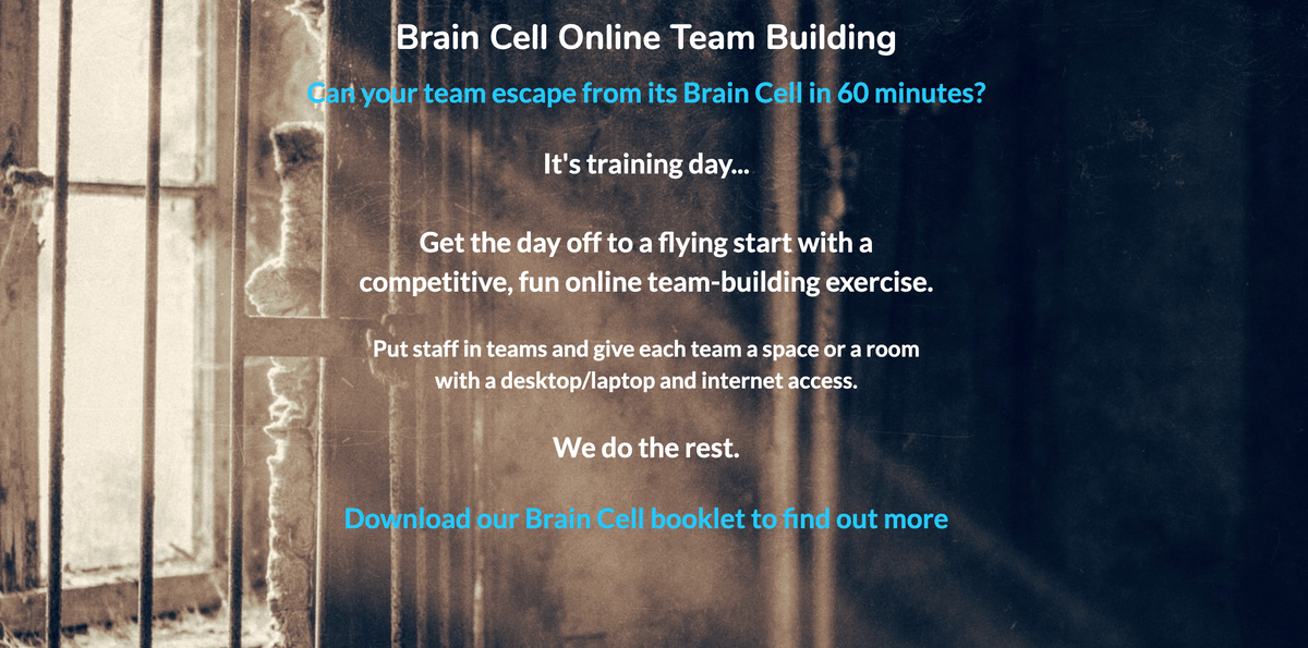 Brain Cell Team Building Page on Teach Well Alliance Website