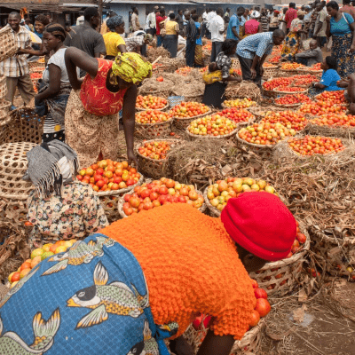 African women farmers selling fresh tomatoes in a crowded market