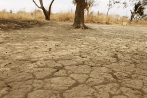 drought parched earth dry soil africa climate change