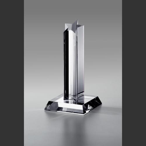 Reach For The Stars Award Trophy