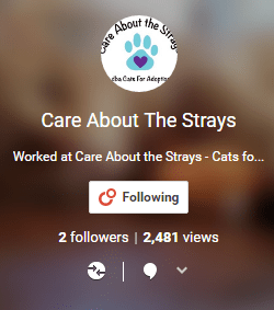 G+ for Care About the Strays