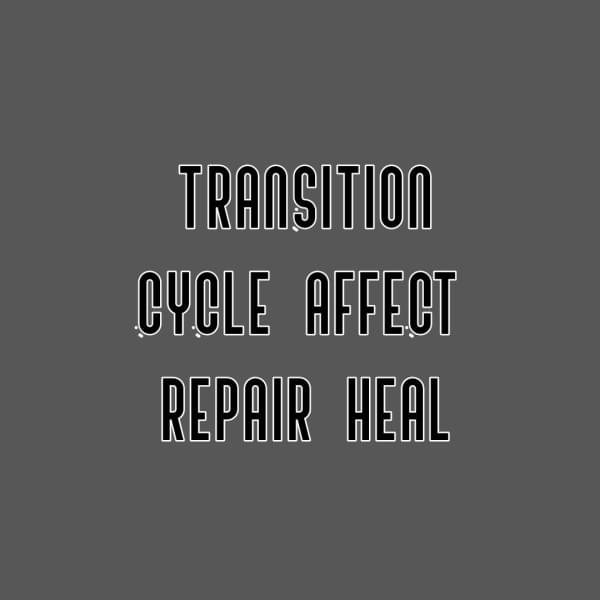 Transition Cycle Graphic (c) Dena Michele Rosko