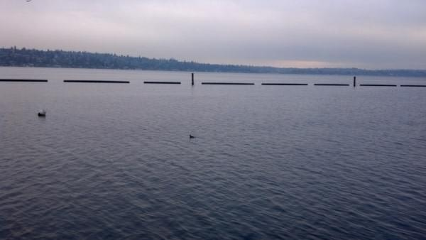 Gene Coulon Memorial Beach Park at Lake Washington, Renton, Wash.