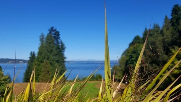Puget Sound via Bloedel Reserve at Bainbridge Island, Wash.