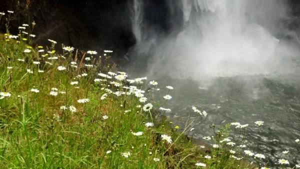 Snoqualmie Falls, North Bend, Wash.