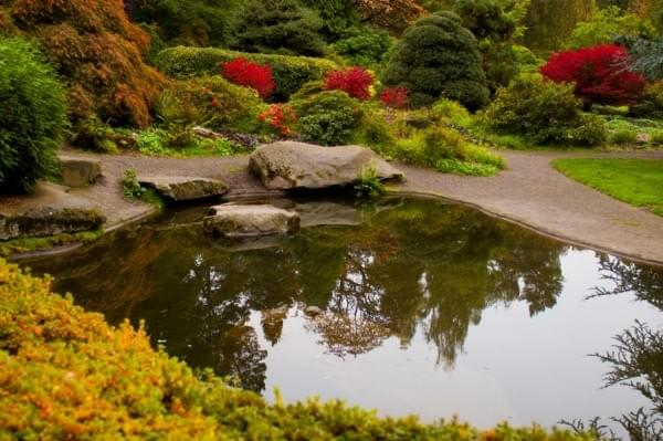 Pond at Kubota Garden, Seattle, Wash.