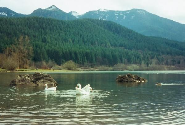Rattlesnake Lake, North Bend, Wash.