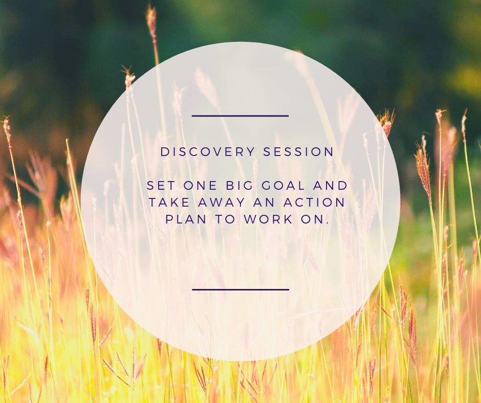 Book your discovery session today to get the ball rolling.