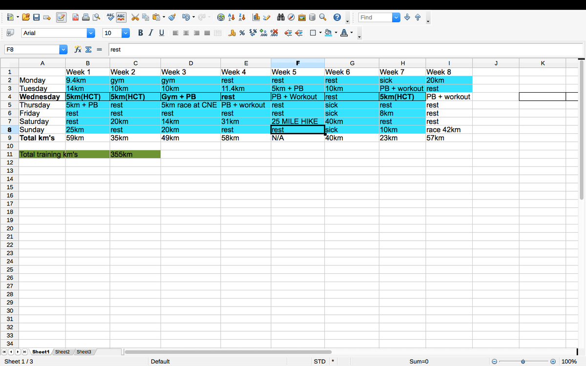 excel spreadsheet of marathon training plan