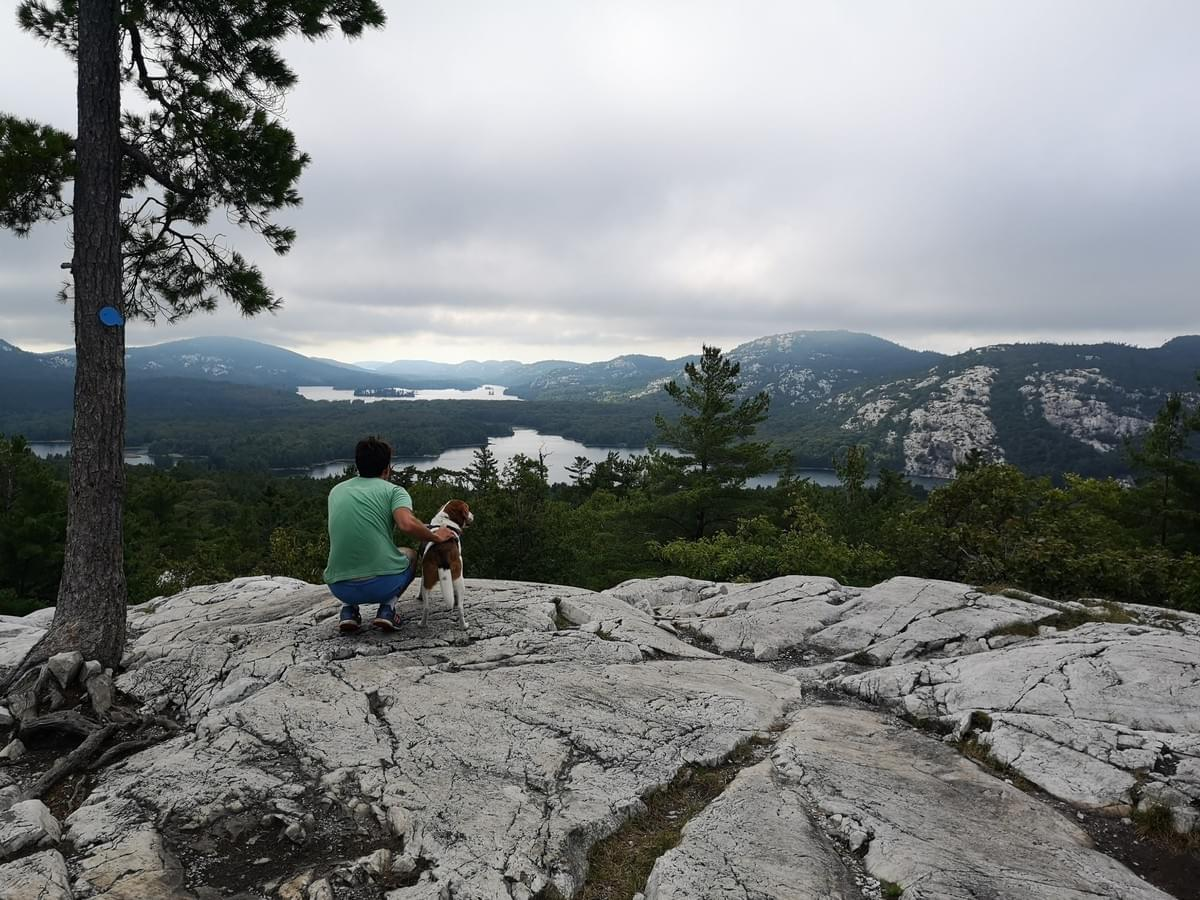 man and his dog look out from the top of the la cloche mountain range The Crack Hike Killarney Provincial Park