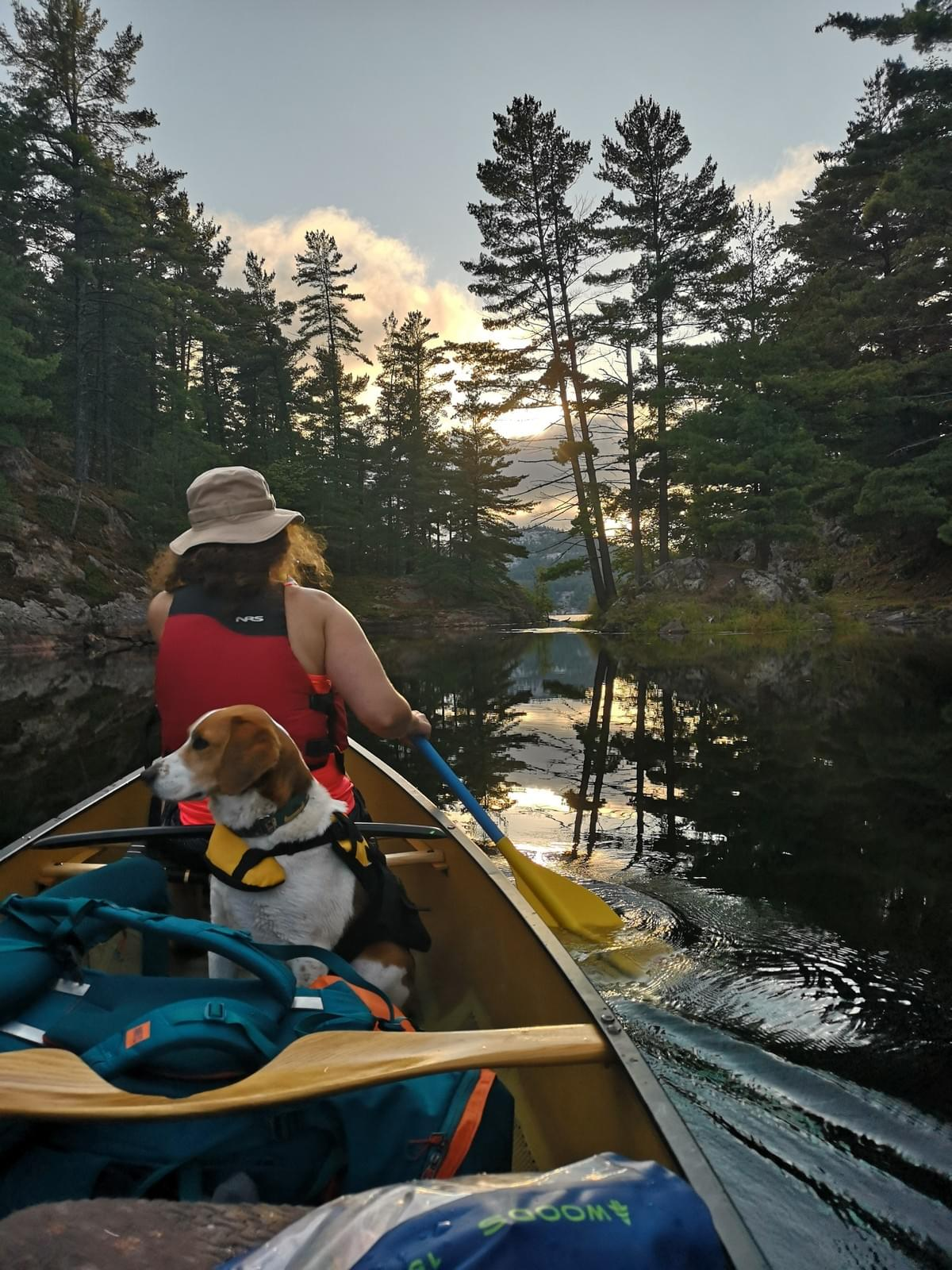 woman paddling a canoe filled with camping gear and a dog in Killarney Provincial Park