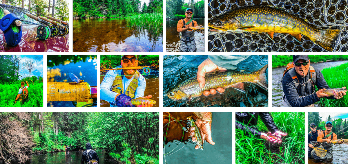 upper peninsula brook trout fly fishing