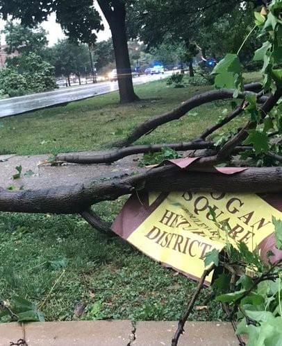 Boulevard sign crushed by a fallen tree
