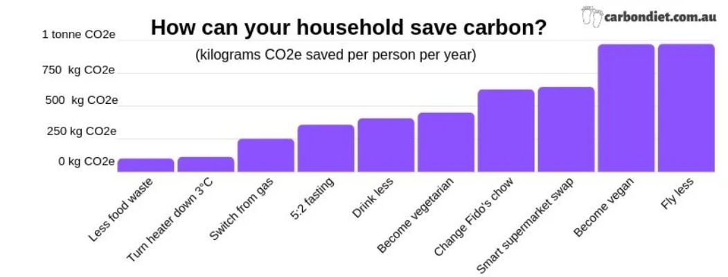 Chart showing which measures save the most carbon