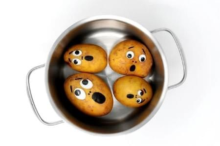 Potatoes contemplate their doom in the cookpot