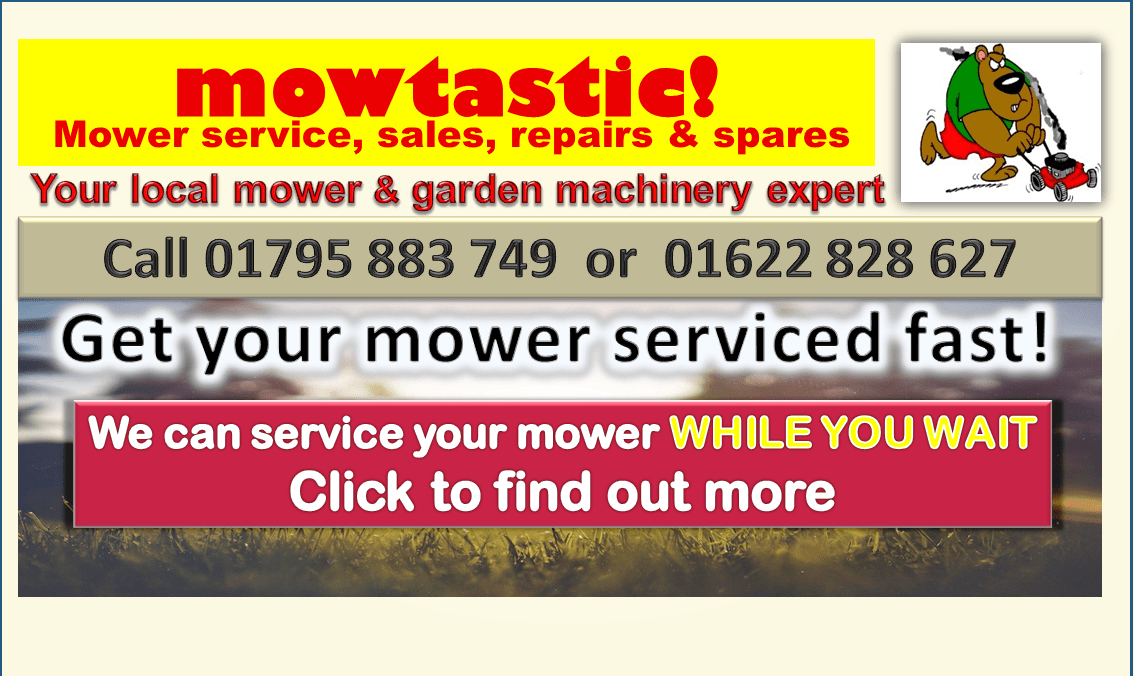 Mowtastic - While you wait service