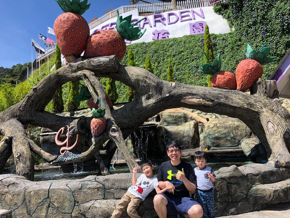 entrance of lavender gardens on a bright sunny day #cameronhighlands #familyvacay #familyfun #familytime #malaysia #familytravel #travelwithkids