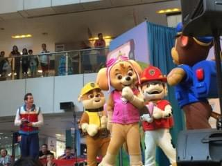 paw patrol 'live' on stage at united square