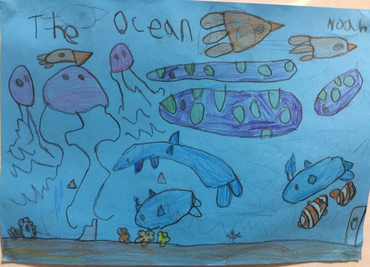 Kid's drawing of ocean animals