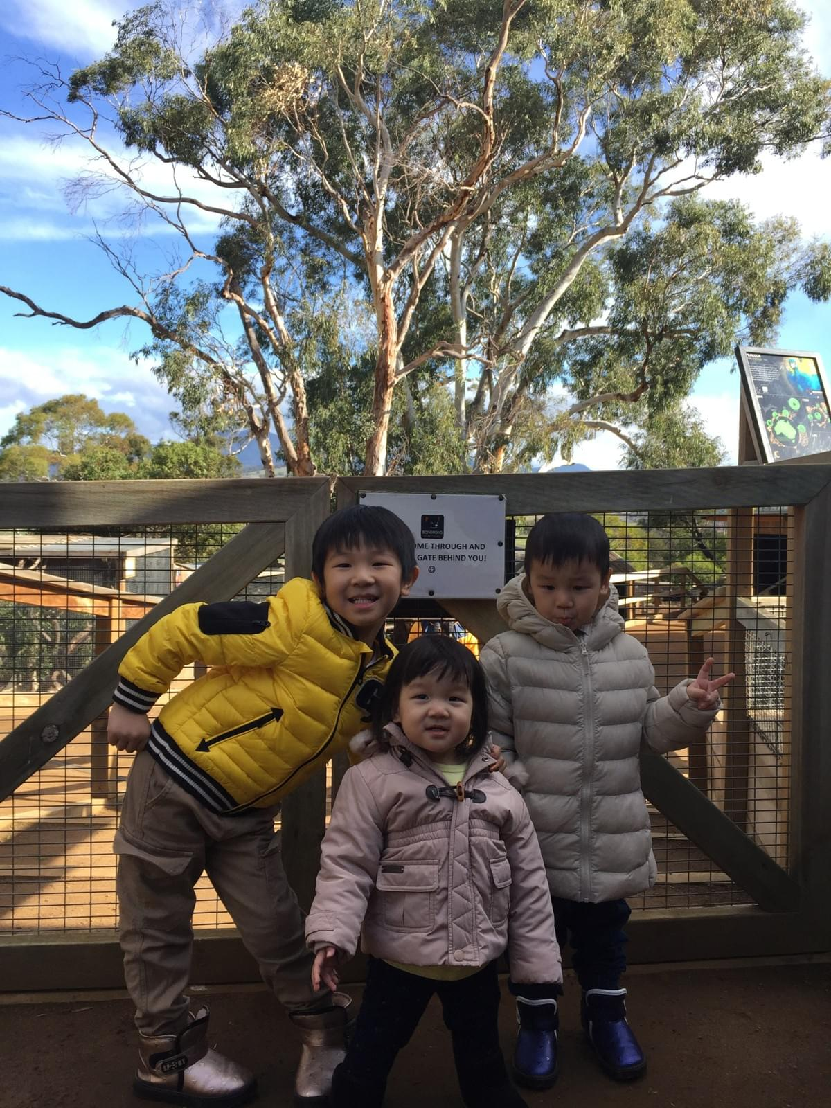 Bonorong Wildlife Sanctuary. 11 places to visit in Hobart, Tasmania