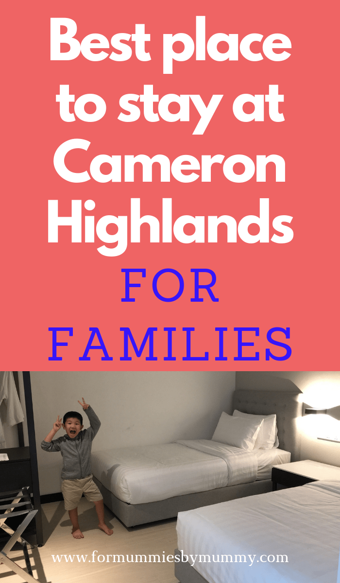 best place to stay at cameron highlands for families with young kids #cameronhighlands #malaysia #familytravel #travelwithkids #familyvacay #roadtrip
