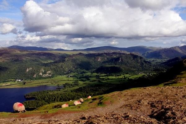 the view from Catbells near Keswick, Lake District
