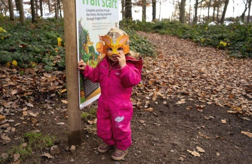 zog the dragon trail at Whinlatter
