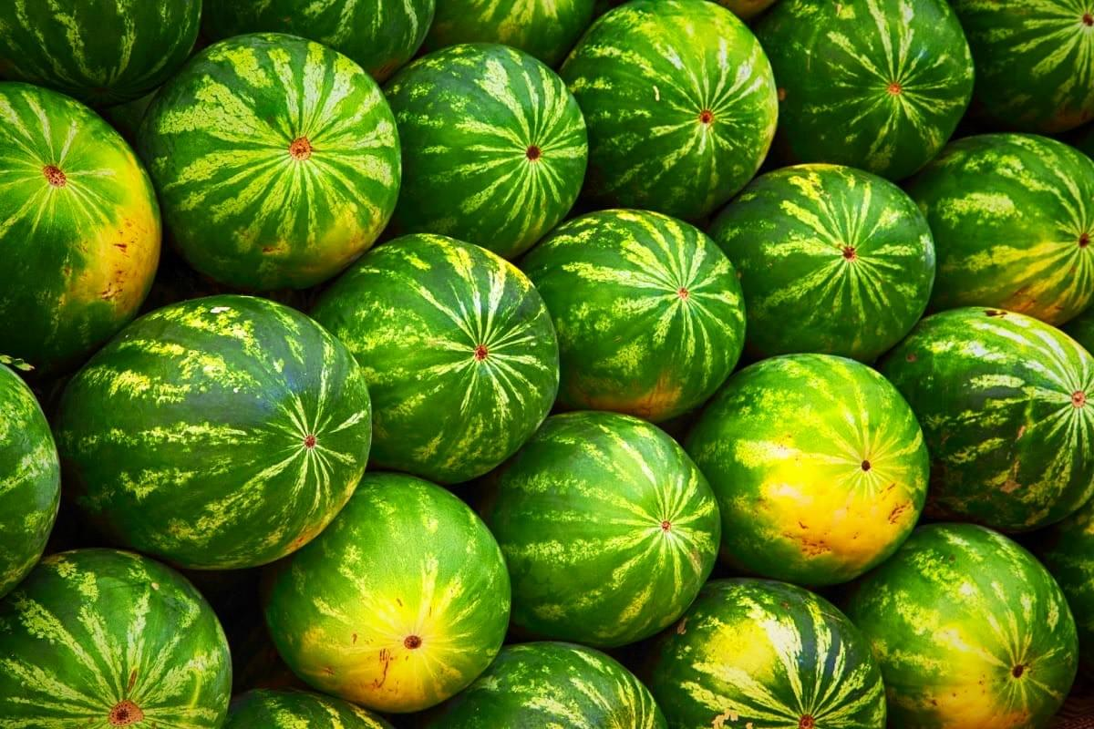 Watermelons in Cambodia
