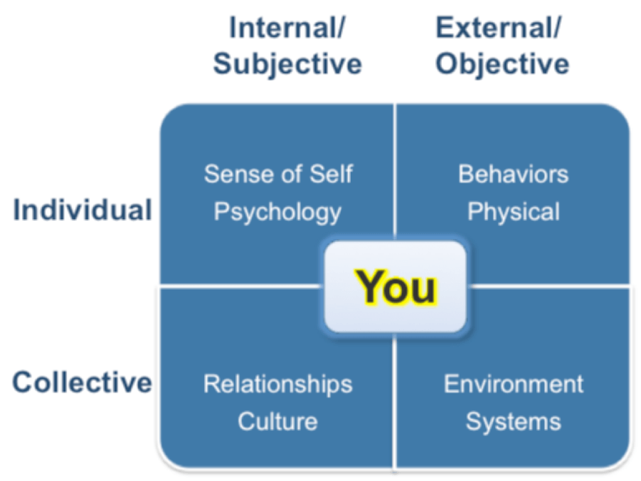 MBTI, CORE self, temperament, Essential Motivators, Interaction Styles, Cognitive Dynamics, Personality Type