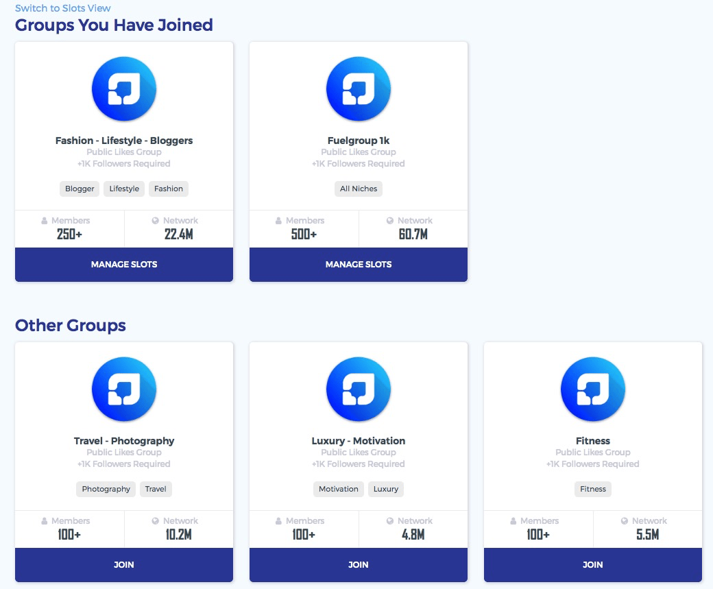 Fuelgram Like groups by niche
