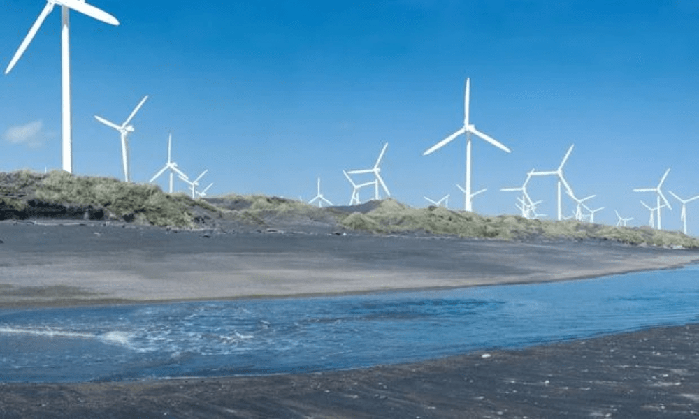 Proposed Waipipi Wind Farm
