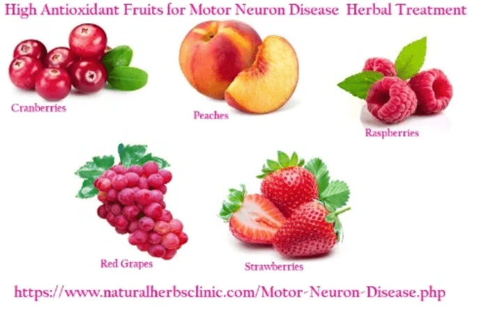 High Antioxidant Fruits for Natural Remedies for Motor Neuron Diseases