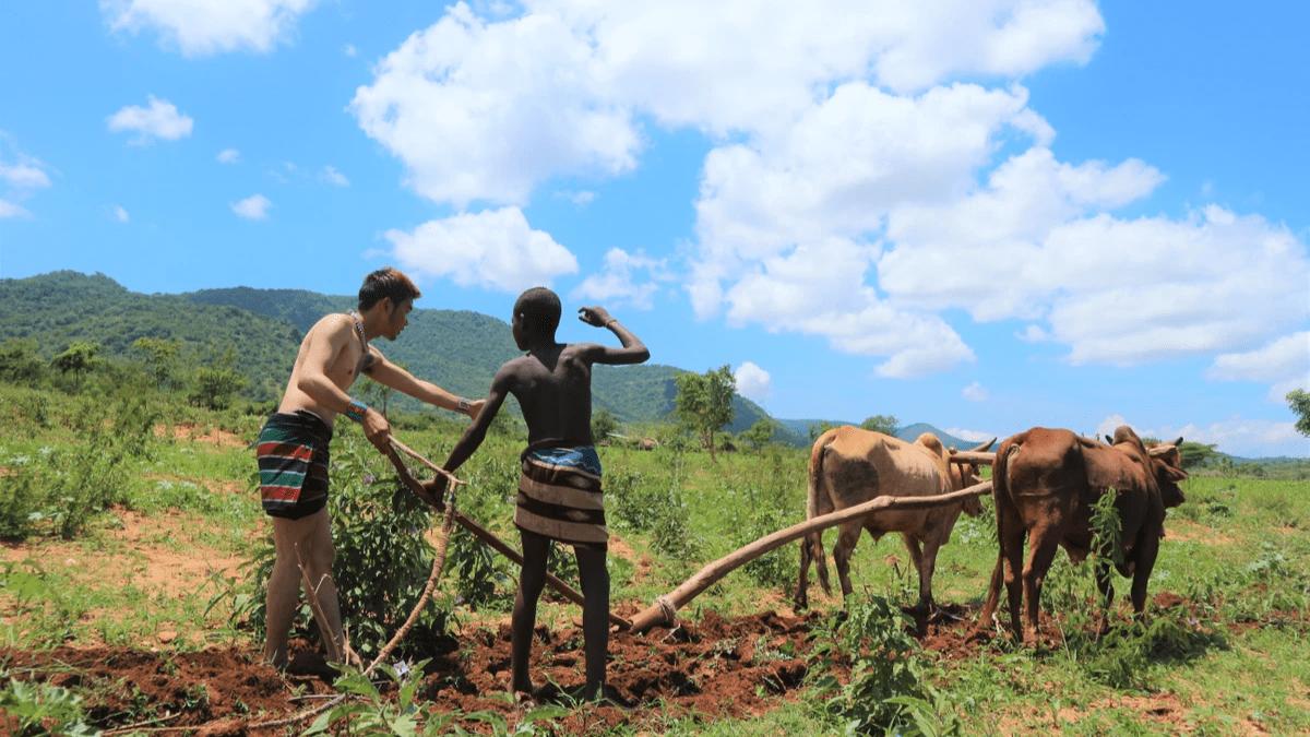 初めてエチオピアに行ったときに農業体験をした時の写真