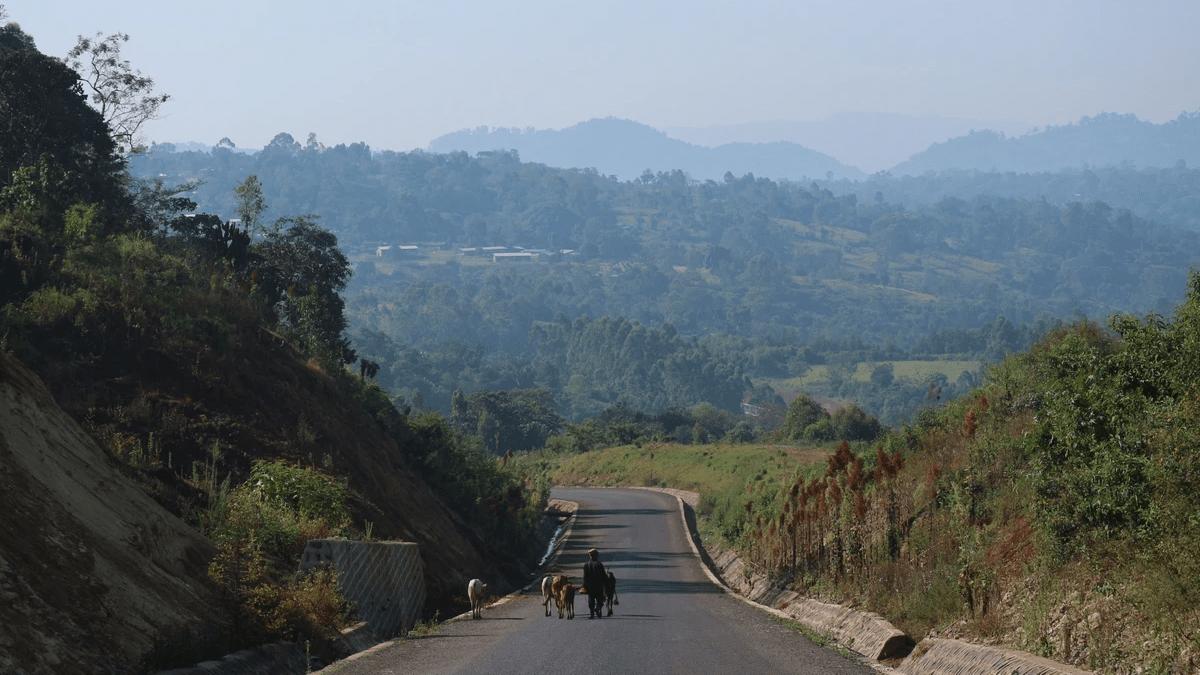 自然が壮大なエチオピア