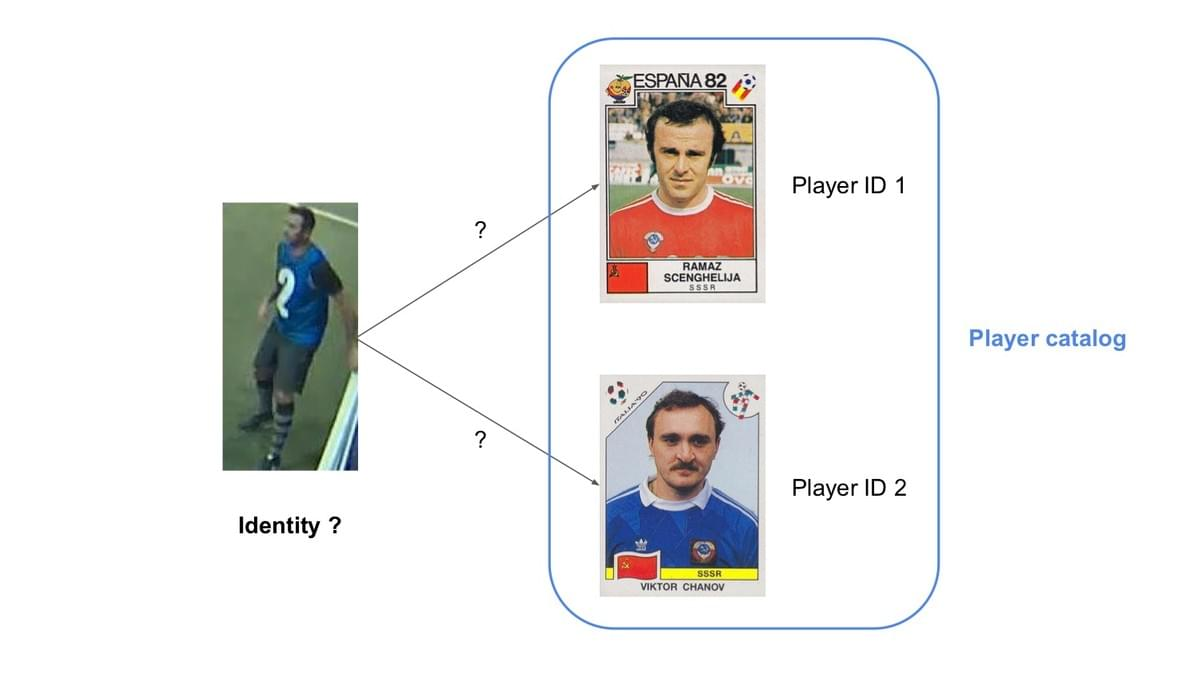 Identification with a catalog of player