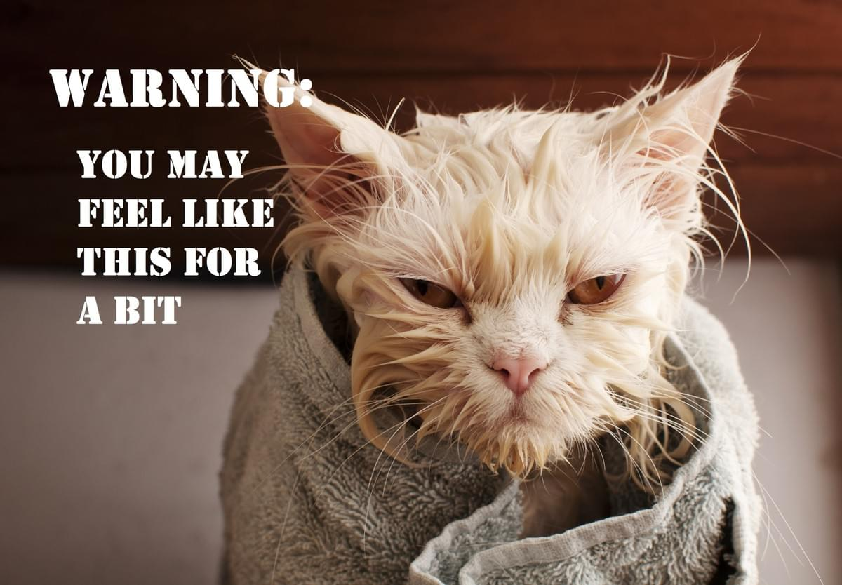 Warning: You may feel like a wet cat for a bit after donation