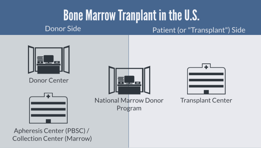 Schematic of bone marrow transplant in US