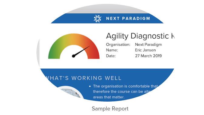 Agility Diagnostic Preview