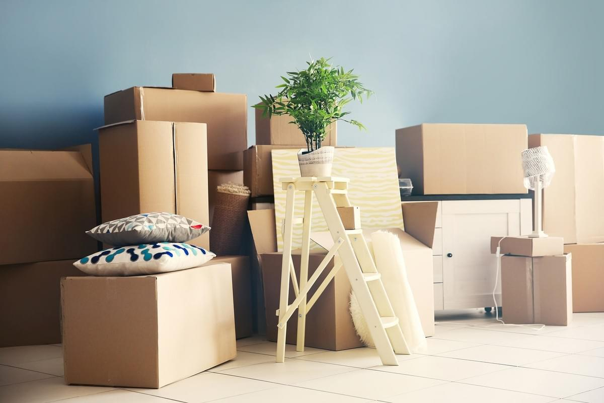 Hire Professional Movers From The Best Moving Company in San ...