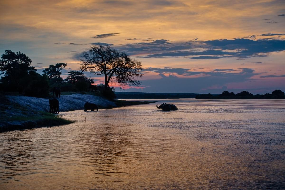 Amazing sunset on the Zambezi River in Livingstone, Zambia.  Picture taken by Hugo Lingeman