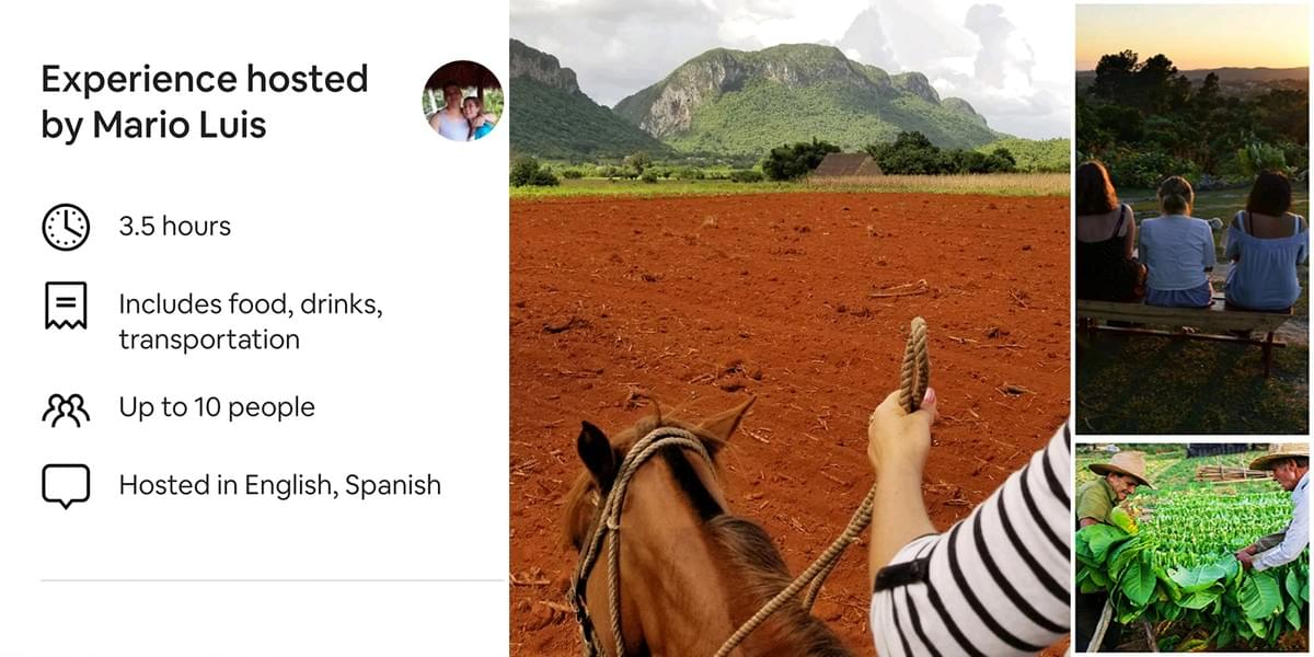 Best day trips to Viñales Valley offers horse experiences and also visiting an organic tobaco farm.