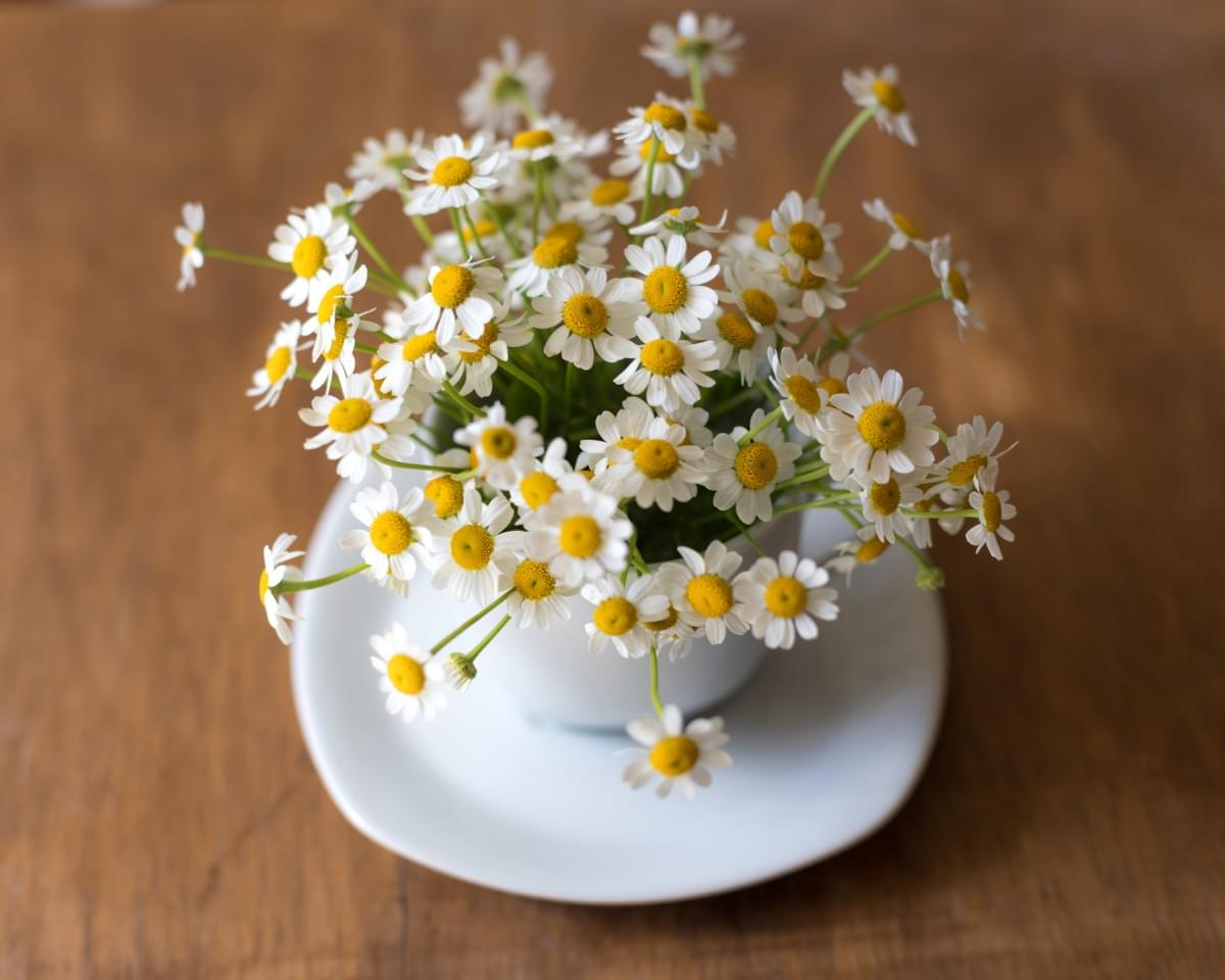 Chamomile tea is superb for calming IBS