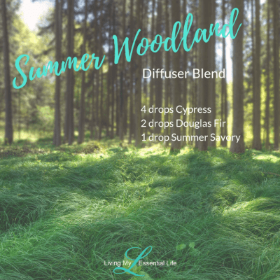 enjoy the fresh smell of walking in nature, you'll love this blend! The Summer Woodland diffuser blend
