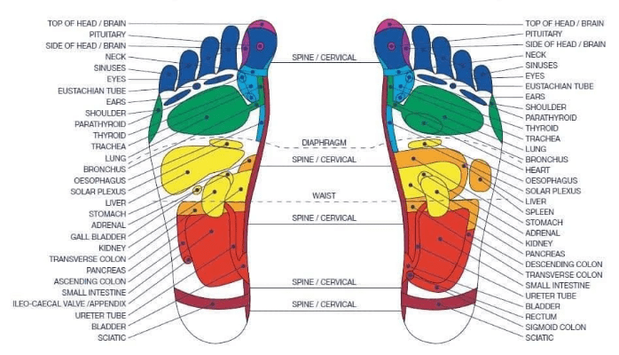 Reflexology Foot Chart for the Blue Big Blue Toe Challenge