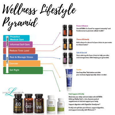 Each level in the Wellness Lifestyle Pyramid contributes to a healthy life and you can begin to build your healthy habits.