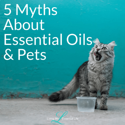 5 Myths About Essential Oils & Pets