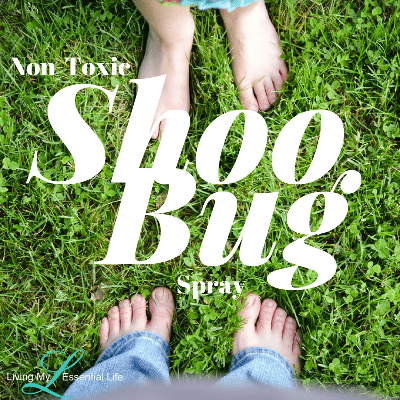 Here is a natural non-toxic bug spray with essential oils to shoo the bugs away.